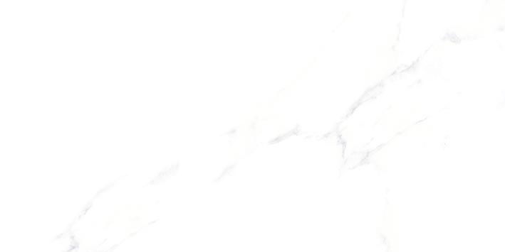 Gráfica Calacatta 30x60 cm 13