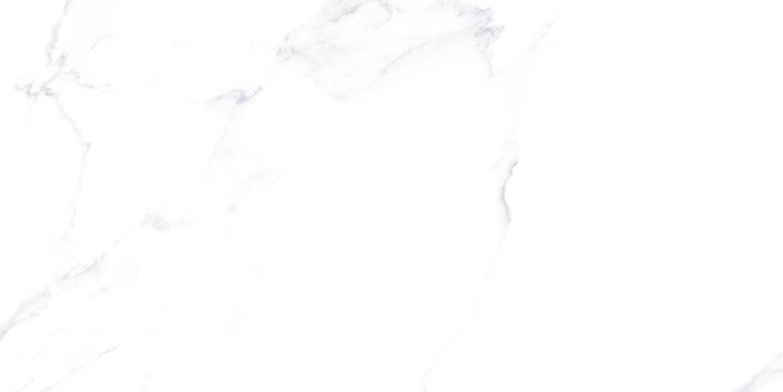 Gráfica Calacatta 30x60 cm 24