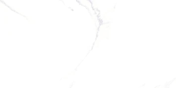 Gráfica Calacatta 30x60 cm 29